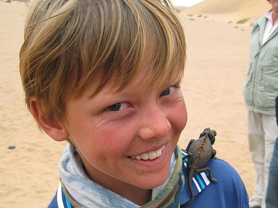 Namibia Safari Gekko