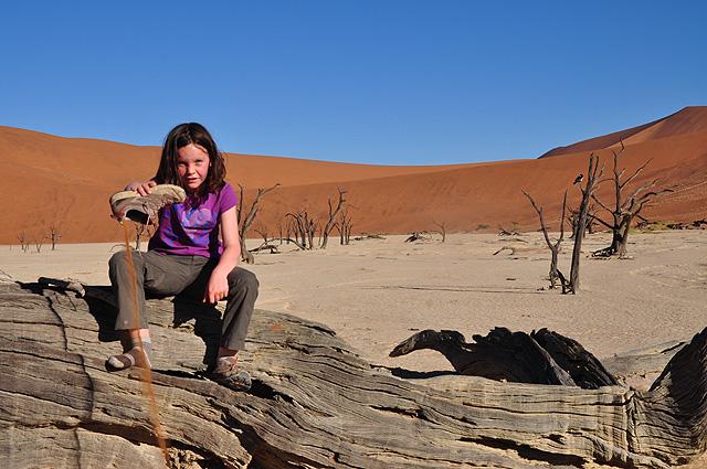 Namibia Safari Namib