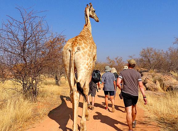 Namibia Rundreise Wanderung